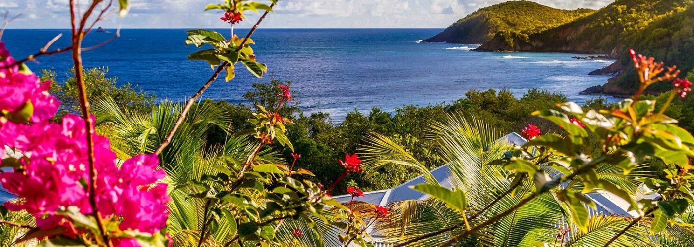 view of coastline on caribbean island