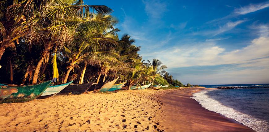 Boats on a tropical beach mirissa south sri lanka