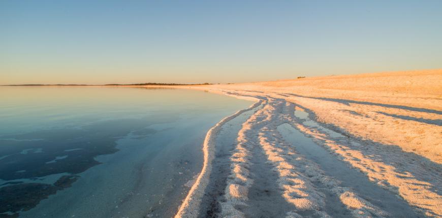 Shell beach denha western australia