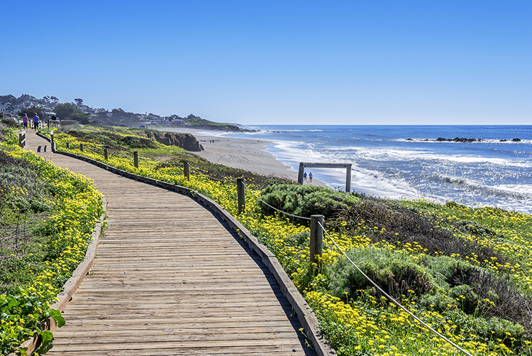 Cambria, california.
