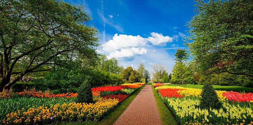 longwood gardens in spring.