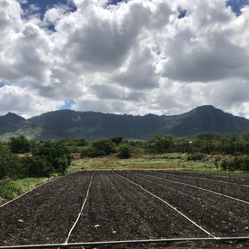 farm land on hawaii.