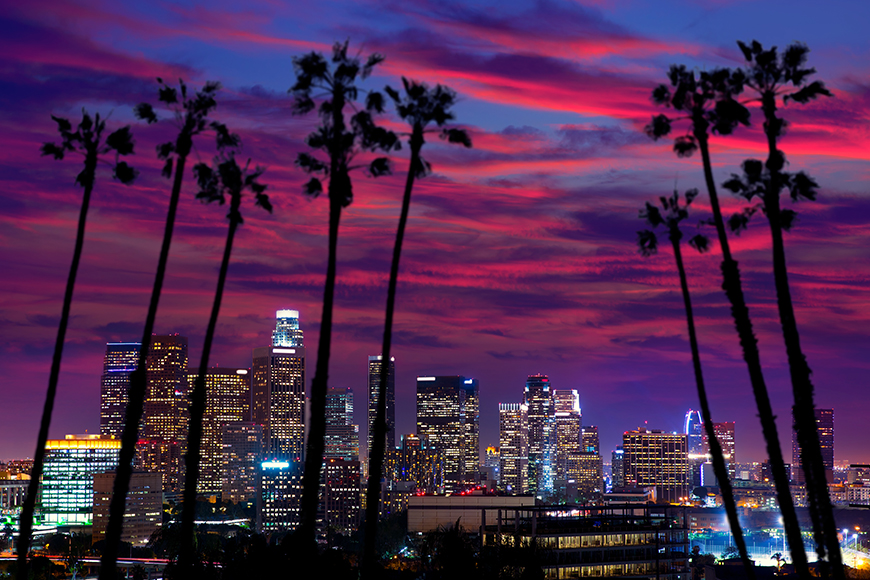 los angeles palm trees and skyline at sunset.