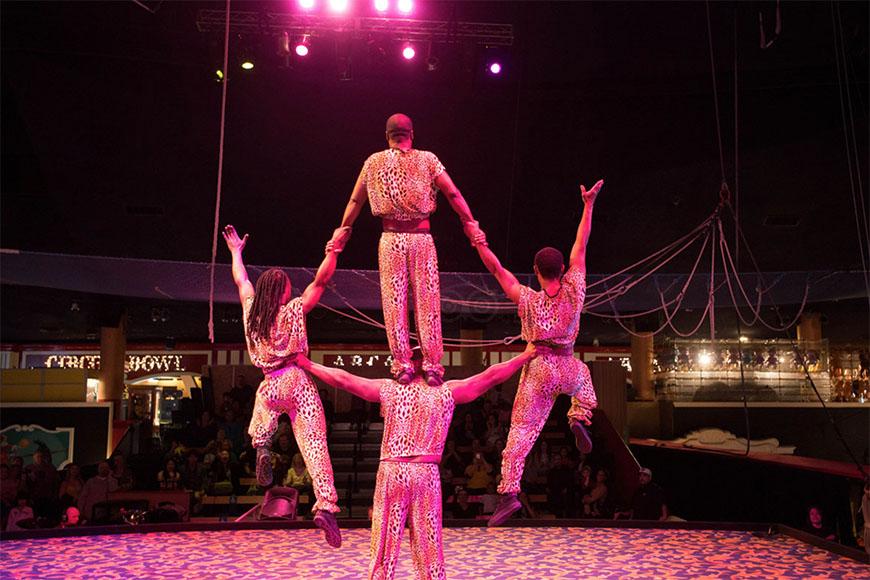 circus circus act las vegas.