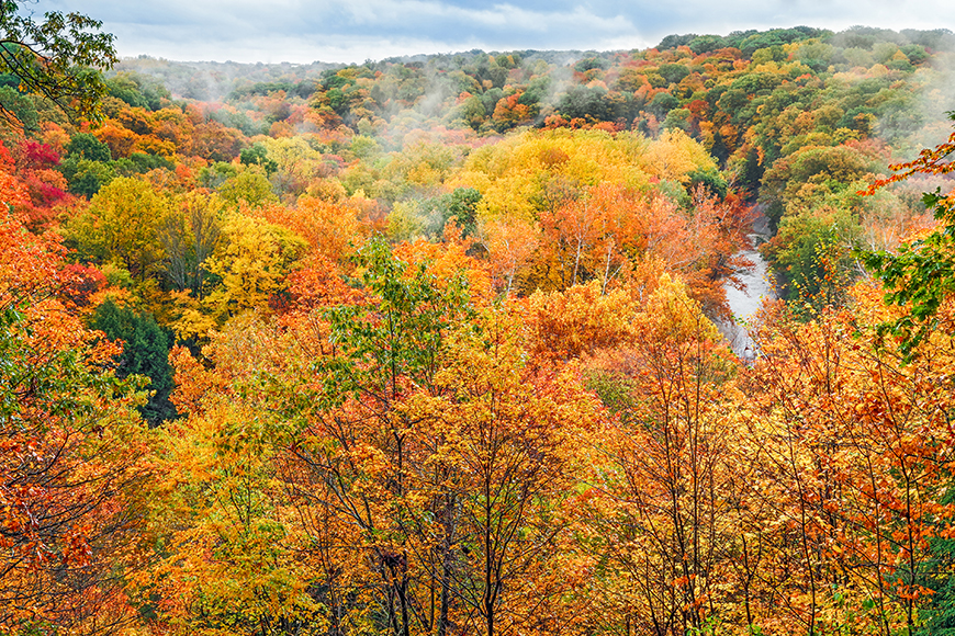fall foliage in cuyahoga valley national park.
