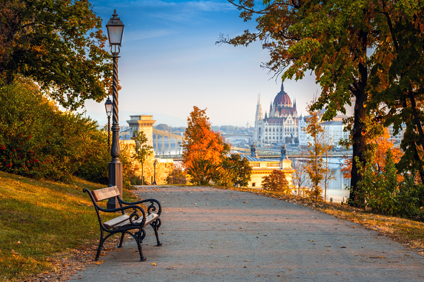 fall foliage in budapest, hungary.
