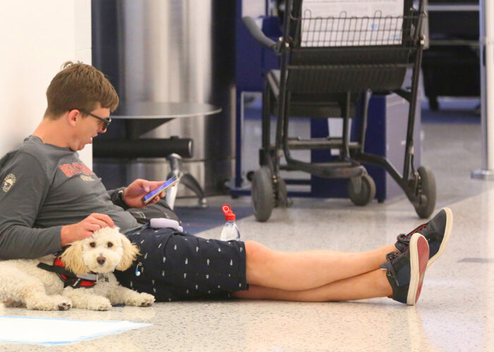 man in airport with dog, service animals on planes.