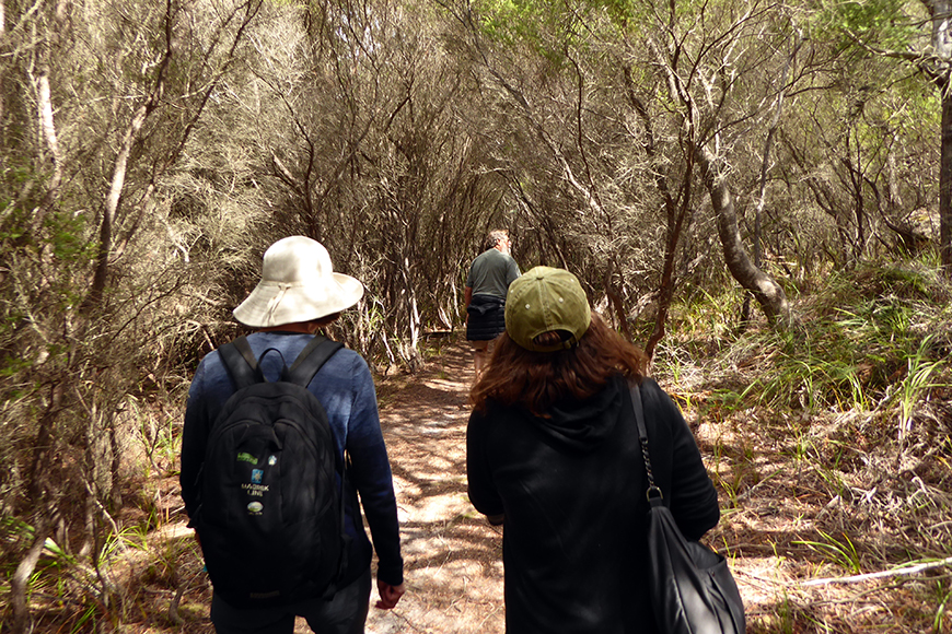 hikers on trail in tasmania.