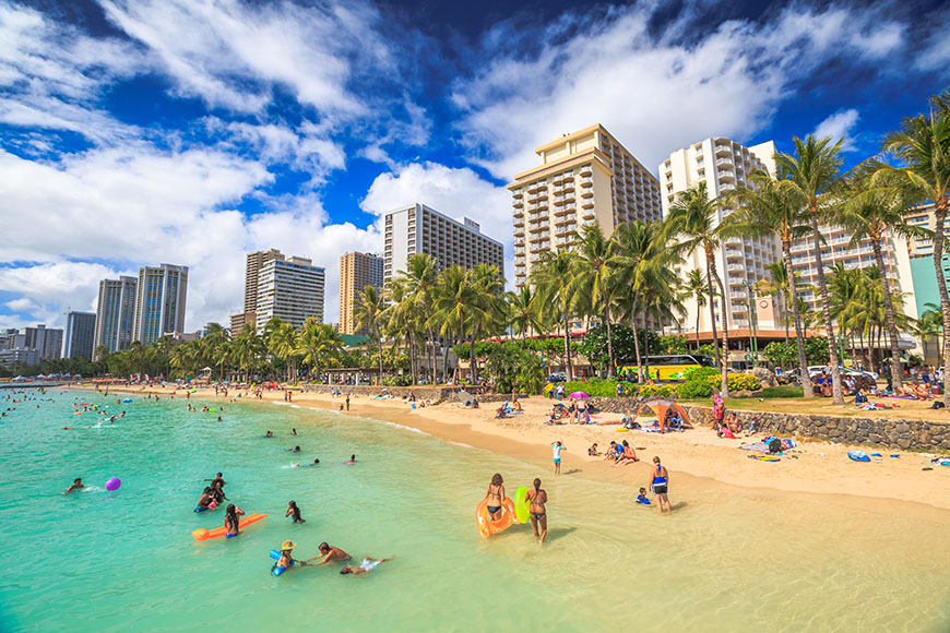 waikiki beach swimmers.