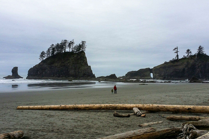 Beach 2 at Olympic National Park