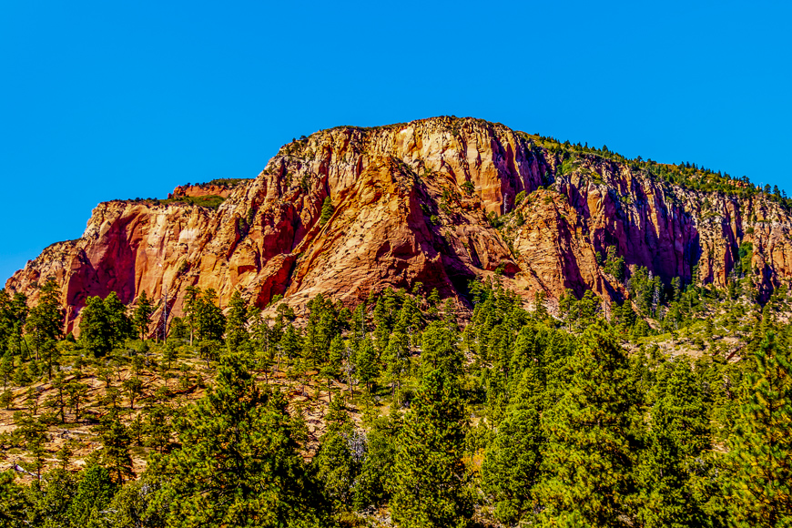 Geological Sandstone formation along the Kolob Terrace Road in Zion National Park, Utah, United States