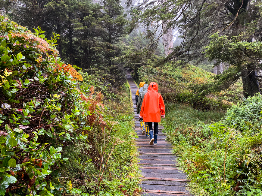 people hike along a path in Tofino, British Columbia, Canada