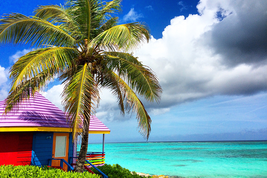 colorful house and palm tree in nassau.