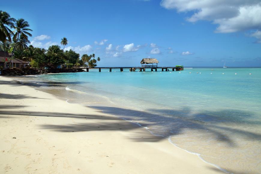 beautiful beach tobago island caribbean.