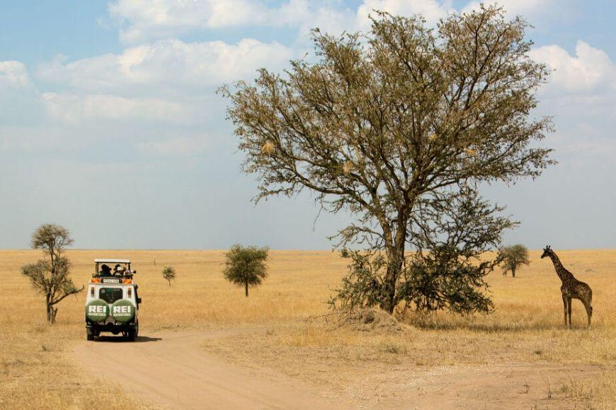 REI tanzania tour africa.