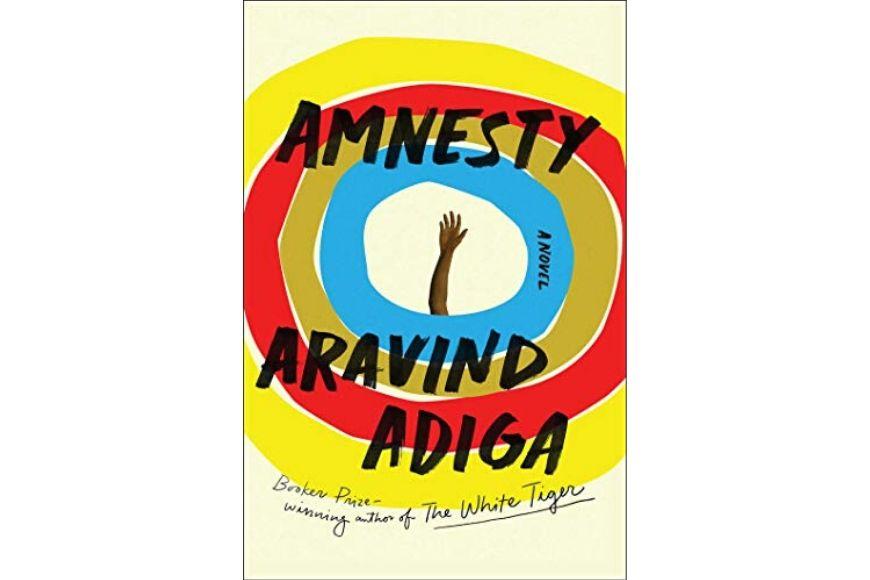 Amnesty, Aravind Adiga.