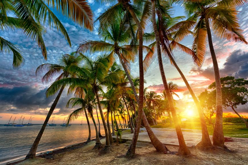 anse champagne beach guadeloupe caribbean.