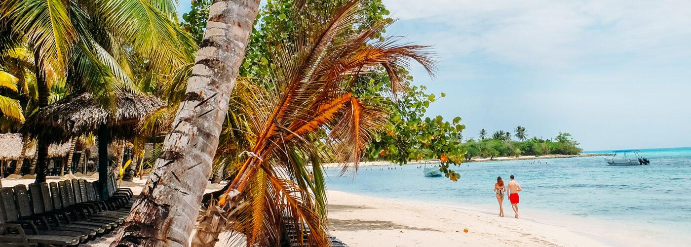 couple walking along beach palm trees
