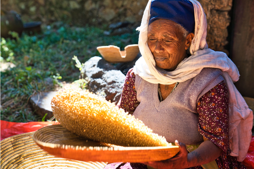 woman tossing corn gondar ethiopia.