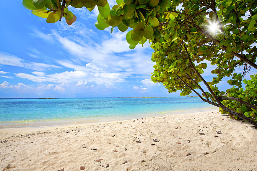 baby beach aruba.