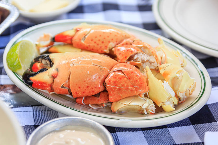 miami stone crab.