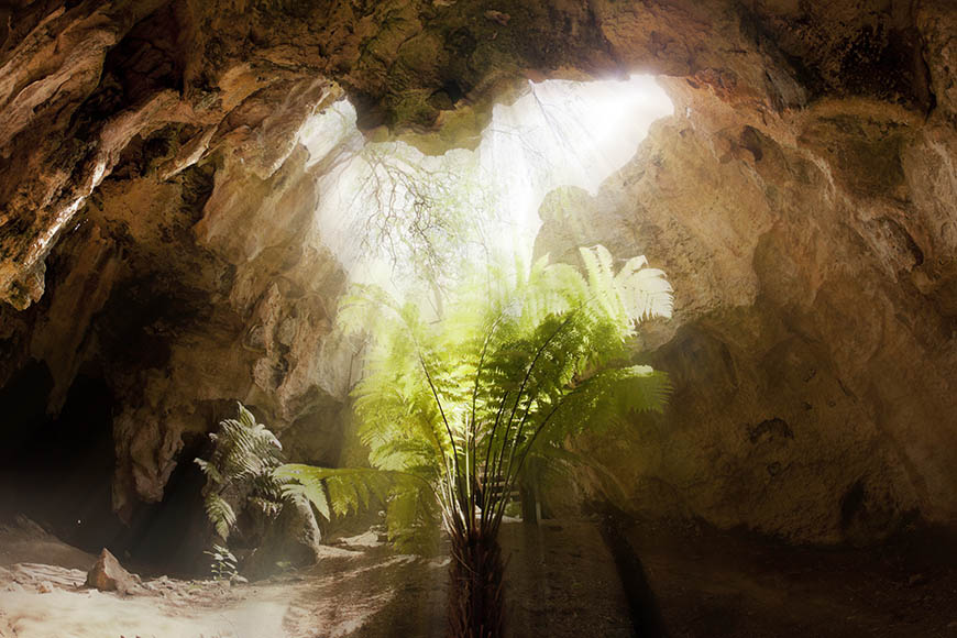 naracoorte caves national park.