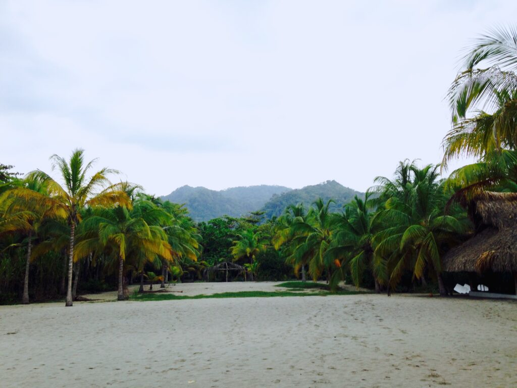 tayrona national park.