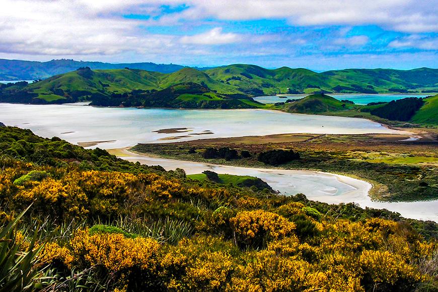 landscape south island new zealand.
