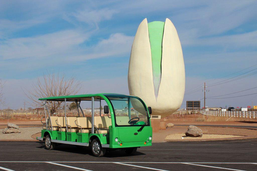 World's Largest Pistachio - New Mexico