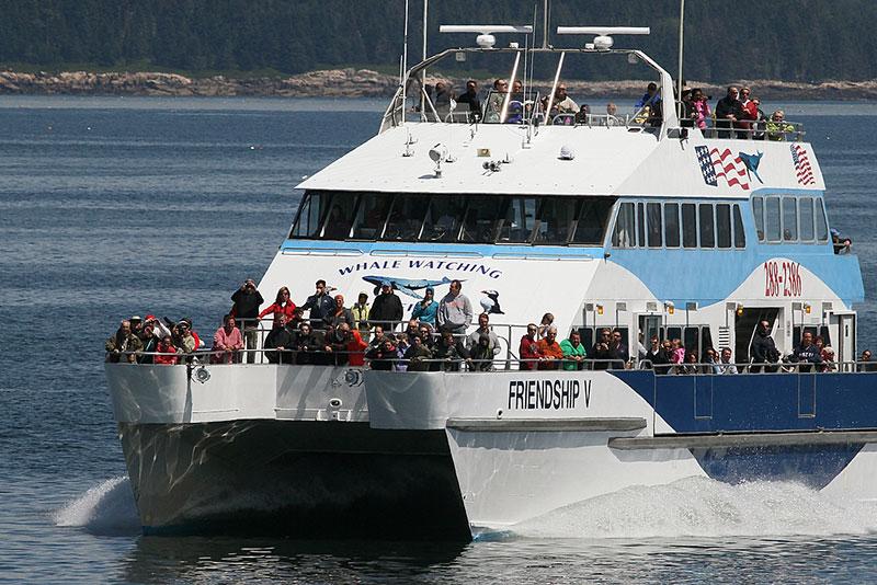 Crowd of tourists on whale watching boat from Bar Harbor Whale Watch Co.