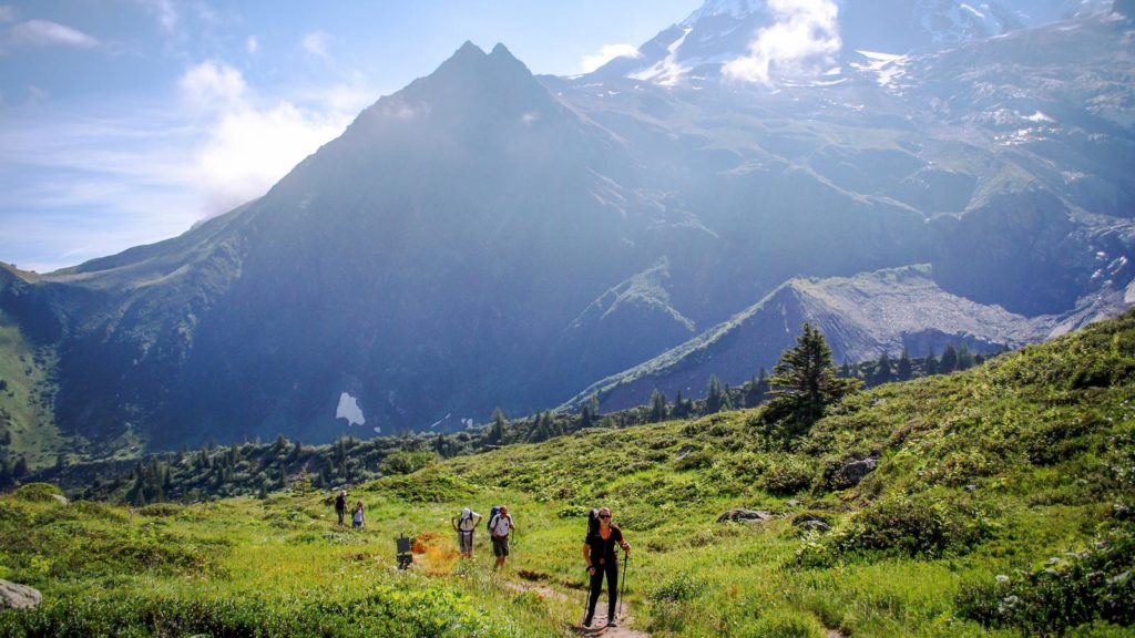 Five hikers making their way up a green trail with mountains in the background
