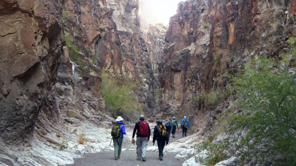 Six hikers walking on a path with steep cliffs on either side