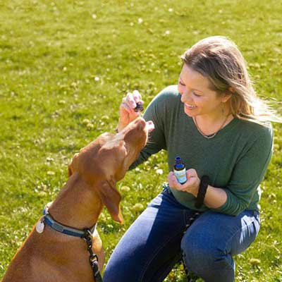 Woman giving her dog drops of Innovet PurCBD+