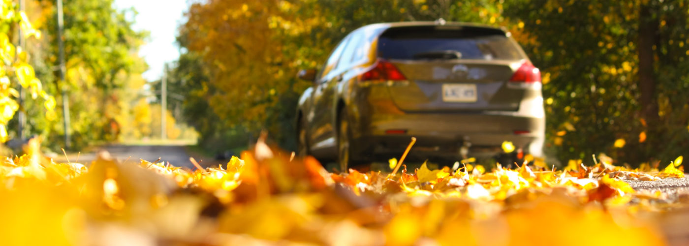 Car driving down autumn street